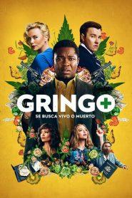 Gringo Se busca vivo o muerto