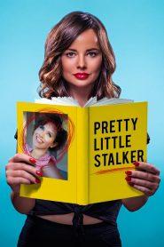 Ver Pretty Little Stalker