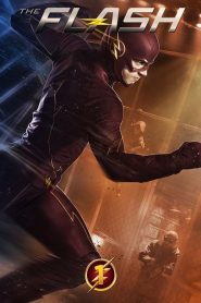 The Flash: Temporada 1