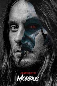 Ver Morbius