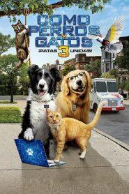 Ver Como perros y gatos 3: Patas unidas