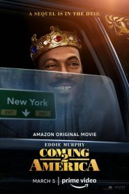 Un príncipe en Nueva York 2