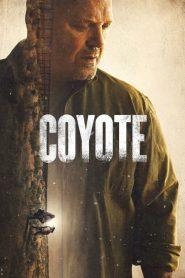 Ver Coyote