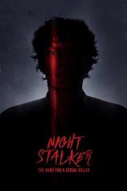 Ver Acosador nocturno: A la caza de un asesino en serie