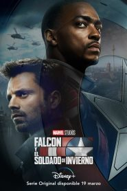Ver The Falcon and the Winter Soldier