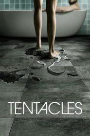 Ver Tentacles