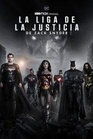 Ver La Liga de la Justicia de Zack Snyder