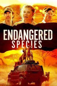 Especies en Peligro (Endangered Species)